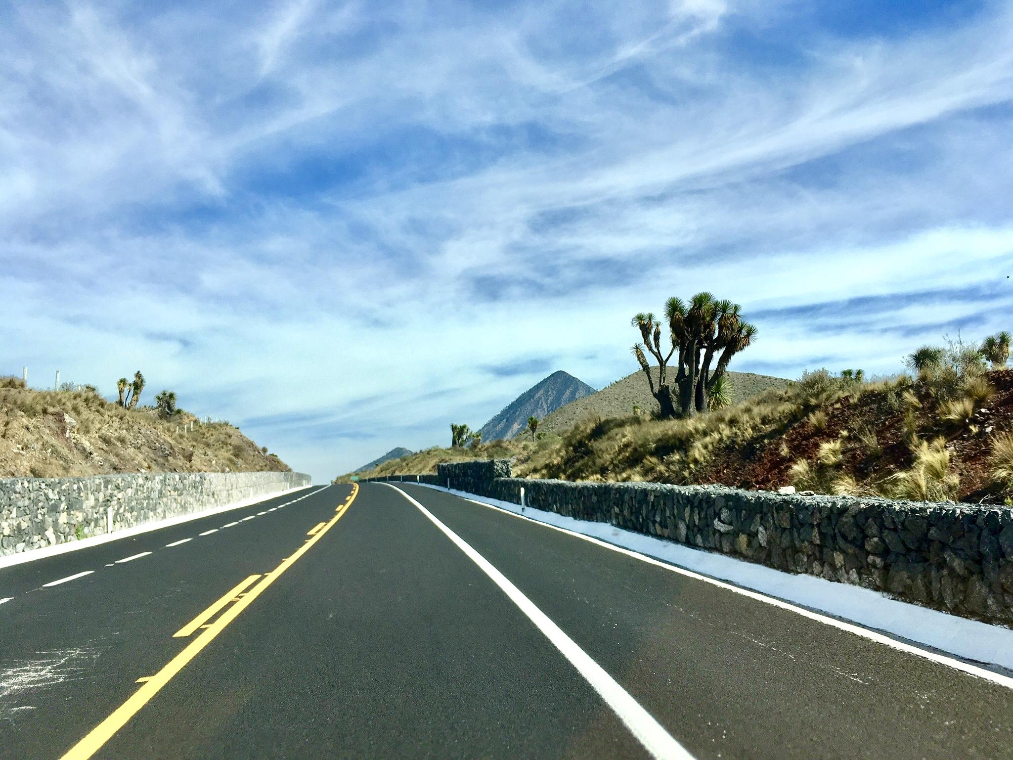 Eine Straße. Ein Vulkan. Ein typischer Wüstenbaum. Viel Himmel.